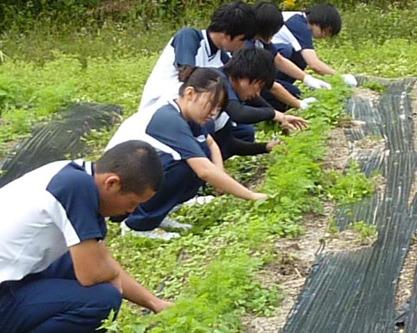 島根中央高校のふるさと学