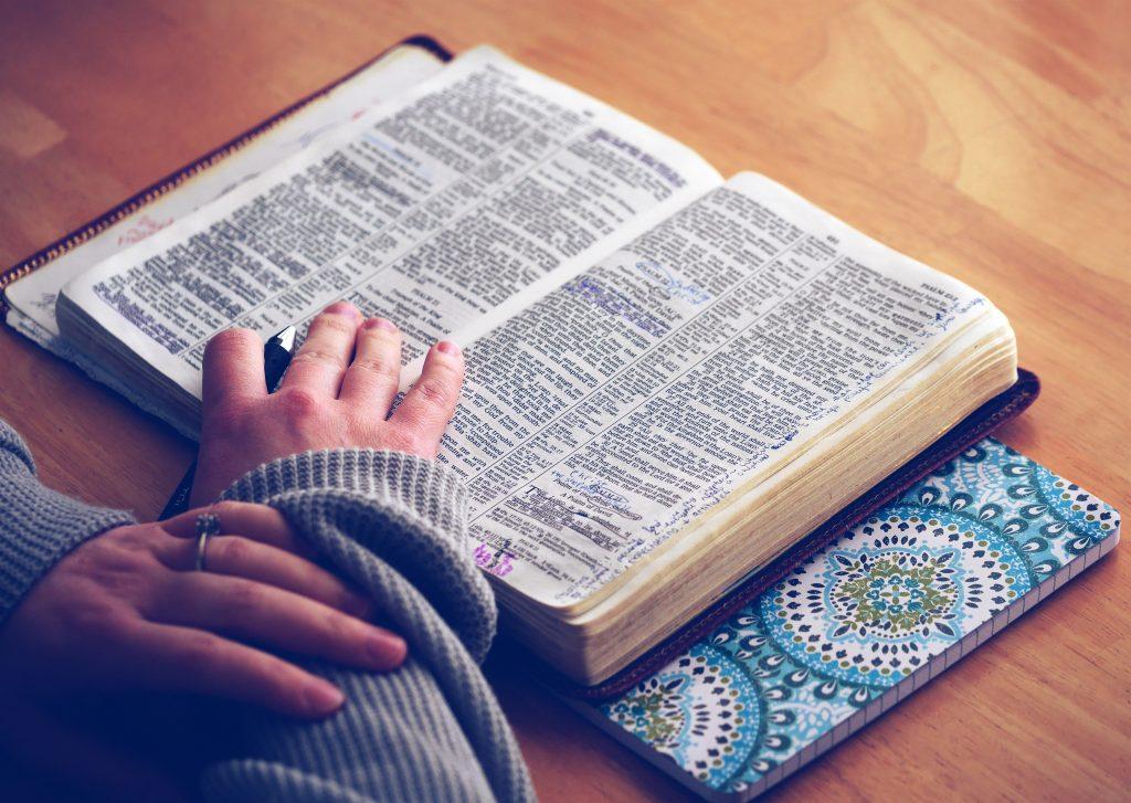 感想文にピッタリ!読書を得意にする本の読み方