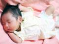 中学技能教科「技術・家庭科」攻略、乳幼児分野の学習のポイント