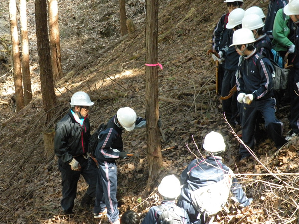 林業体験中の生徒たち
